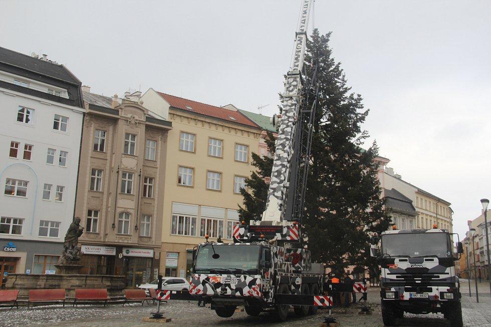 Kácení vánočního stromu v Olomouci