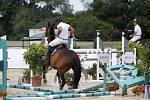 Paolo Paini zboural překážku. Světový pohár CSI*** Olomouc. Závody pro šestileté a sedmileté koně.
