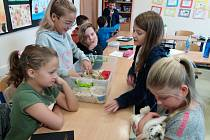 Ve šternberské škole oslavili Světový den zvířat.