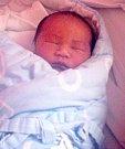 Hoang Hai Dang, Olomouc, narozen 27. dubna v Olomouci, váha 3100 g
