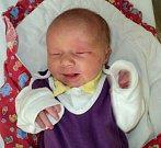 Emily Kocourková, Měrotín, narozena 9. ledna ve Šternberku, míra 47 cm, váha 3270 g