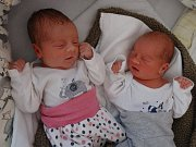 Anastázie a Alexej Vlčkovi, narozeni 10. února, míra 49 cm, váha 2480 g a 2560 g