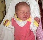 Laura Polončíková, Mohelnice, narozena 31. října ve Šternberku, míra 50 cm, váha 3560 g