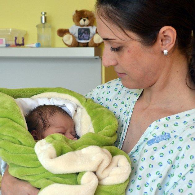 Šternberská porodnice slaví jubileum. V letošním roce se v ní narodilo již 500 dětí. Jubilejním novorozencem se stal malý David, jehož maminka přijela rodit z Litovle: