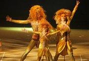 Balet Simba – příběh o lvím králi v režii Roberta Balogha