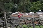 Stavba jihoafrického pavilonu v zoo.