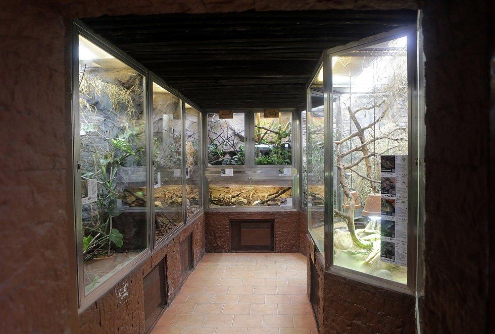 Nová terária v olomoucké zoo v nevyužité části interiéru pavilonu žiraf