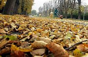 Začátek listopadu v olomouckých parcích