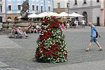 Květinové pyramidy v červené a bílé barvě na Horním náměstí v Olomouci