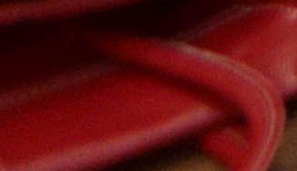 Kabelkový veletrh a doprovodný program v olomouckém kině Metropol.