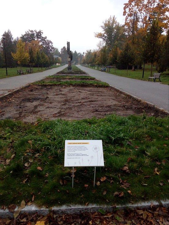 Záhony v Rudolfově aleji procházejí obnovou. Zahradníci na ně vysázejí tisíce trvalek, okrasných trav a cibulovin.