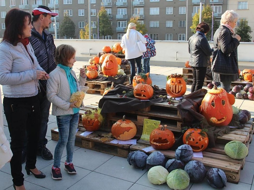 Podzimní etapa tradiční celonárodní výstavy ovoce a zeleniny zaplnila olomoucké Výstaviště Flora.