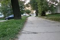 Dvojice vandalů poškozovala cestu.