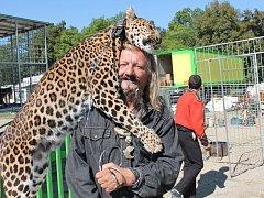 Cirkus Jo-Joo v Olomouci. Jaromír Joo se svými kočičími miláčky