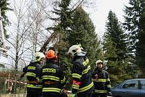 Hasiči zasahují u zlomeného stromu v Jílové ulici v Olomouci. 1. dubna 2015