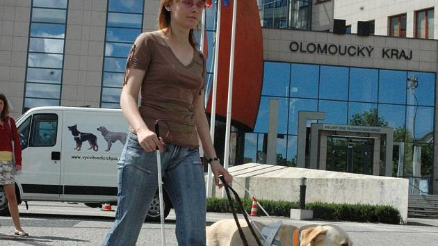 Vítězný tým. Labradorka Jesabel, která vyhrála závody vodicích psů v Olomouci, i s majitelkou Pavlou Čichoňovou.
