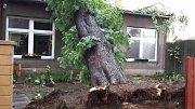 Následky bouřek v Olomouckém kraji - 16. 6. 2019