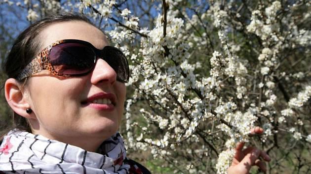 Jaro v parku. Ilustrační foto