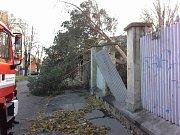 Následky silného větru v Olomouci