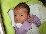 Klára Pechrová, Šternberk, narozena 13. ledna ve Šternberku, míra 51 cm, váha 3830 g