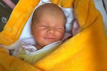 Eliška Loubalová, Olomouc, narozena 3. srpna ve Šternberku, míra 46 cm, váha 2680 g