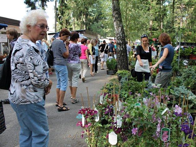 Letní Flora v Olomouci