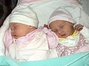 Marie a Alžběta Běhalovy, Velká Bystřice, narozeny 10 října ve Šternberku, míry 46 a 46 cm, váha 2610 a 2380 g