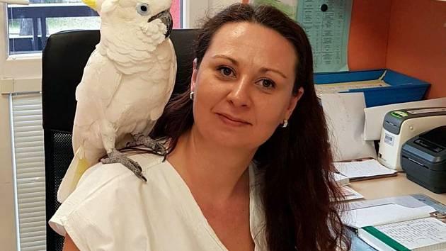 Půlmetrový papoušek navštívil onkologickou kliniku olomoucké fakultní nemocnice, kde mu sestřičky poskytly první pomoc