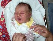 Leontina Křížová, Šternberk, narozena 24. října ve Šternberku, míra 49 cm, váha 3370 g