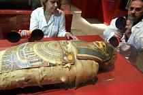 Instalace výstavy Poklady starého Egypta - Sbírka Josefa Ferdinanda Habsburského ve Vlastivědném muzeu v Olomouci v říjnu 2013.