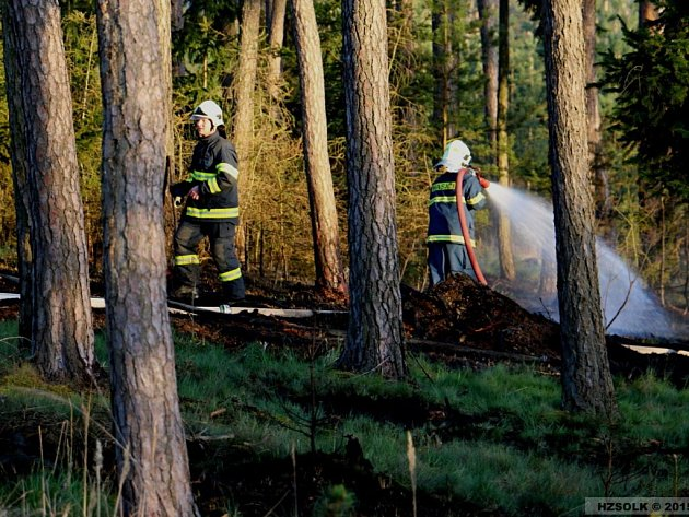 Likvidace požáru lesa v Náměšti na Hané