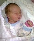 Šarlota Přecechtělová, Charváty, narozena 13. dubna, míra 54 cm, váha 4200 g