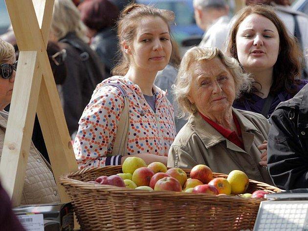 Hanácké farmářské trhy na Dolním náměstí