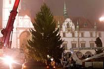 Stavění vánočního stromu před olomouckou radnicí