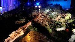 Spadený strom na Jesenicku. Následky silného větru 27. prosince 2017 v Olomouckém kraji