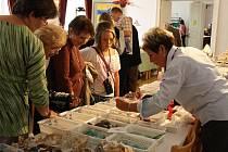 26. prodejní výstava minerálů, drahých kamenů a zkamenělin.