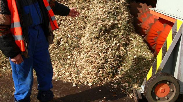 Dřevní štěpka - odpad ze zpracování dřeva. Ilustrační foto