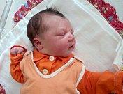 Daniela Knutová, Šternberk, narozena 6. června ve Šternberku, míra 50 cm, váha 3890 g