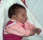 Julie Vlčková, Červenka, narozena 6. února ve Šternberku, míra 50 cm, váha 3930 g