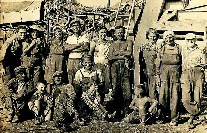 ZEMĚDĚLSKÉ DRUŽSTVO. Kolektivizace v Pňovicích, žně v nově založeném JZD počátkem šedesátých let.