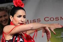 Festival flamenca v Olomouci