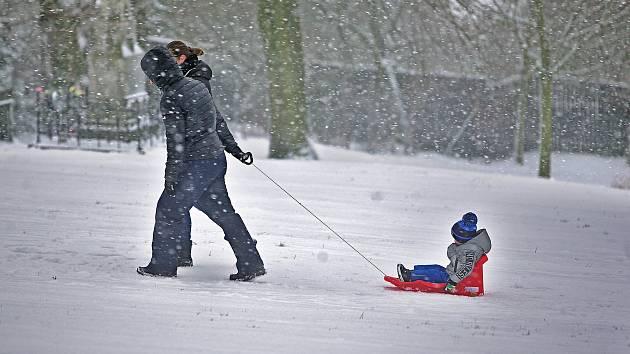 Sněžení v Olomouci - 8. ledna 2019