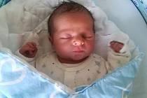 Dominik Malý, Drahanovice narozen 27. prosince míra 51 cm, váha 3350 g