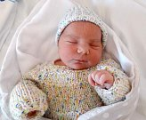 Patricie Zdařilová, Olomouc, narozena 2. dubna,váha 3650 g