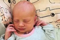 Marie Novotná, Přerov, narozena 26. prosince, míra 49 cm, váha 2940 g