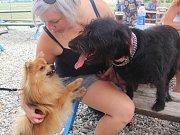 Na první ročník pejskyády dorazilo asi padesát psů se svými páníčky