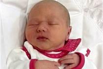 Mia Ann Mertová, Majetín, narozena 18. listopadu v Přerově, míra 50 cm, váha 3690 g
