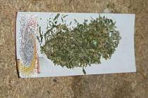 Policisté odhalili v Uničově varnu pervitinu
