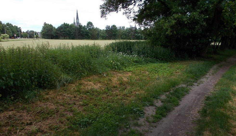Nový olomoucký park má vyrůst mezi Dlouhou ulicí a Mlýnským potokem
