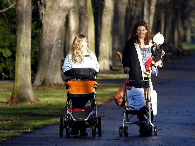 Nezvykle teplá zima láká k procházkám v parku. Ilustrační foto